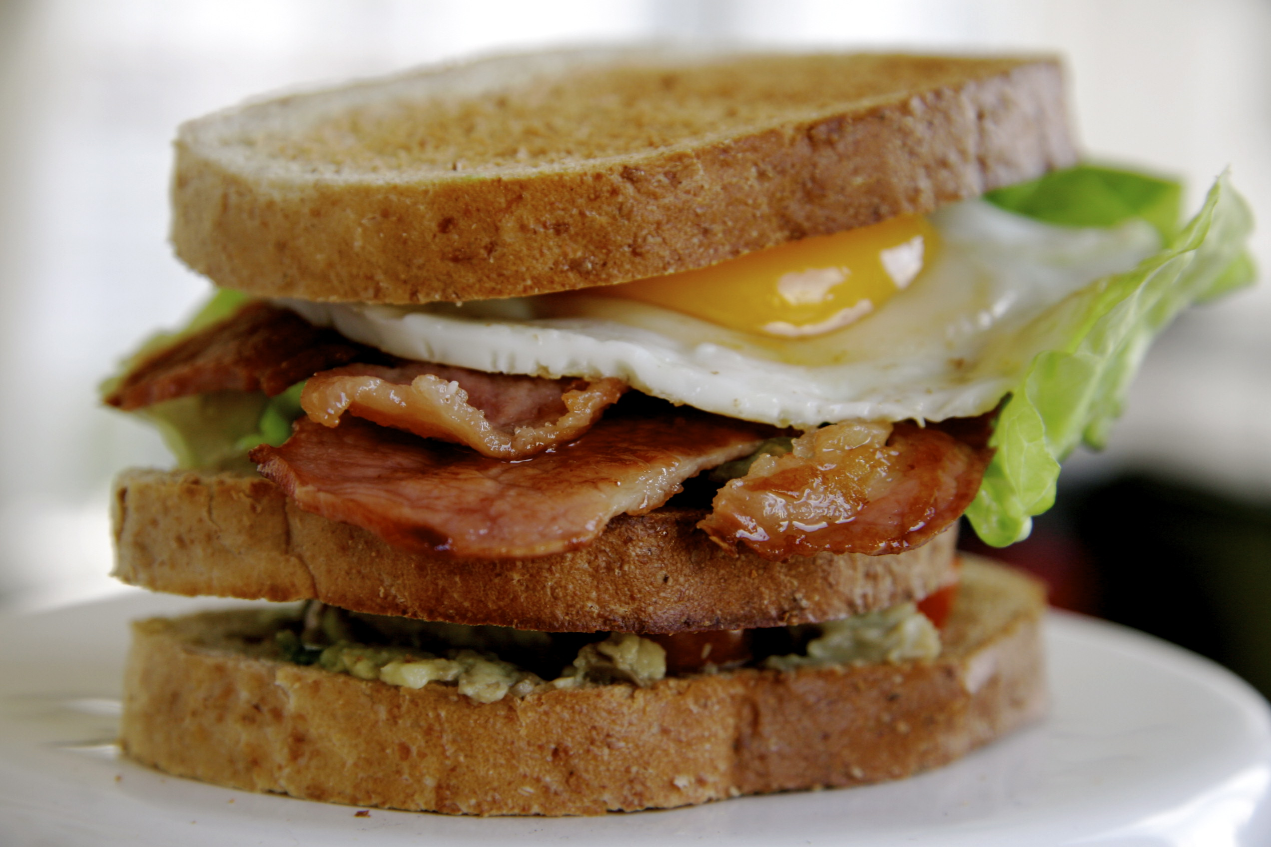 bacon lettuce avocado bacon lettuce tomato egg and avocado sandwich ...
