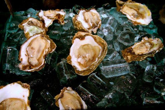 Crizia Oysters By AL